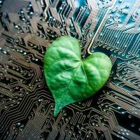 Les initiatives des fournisseurs IT en matière de développement durables sont bénéfiques pour l'environnement et peuvent aussi générer des opportunités commerciales pour les partenaires. Crédit photo : D.R.