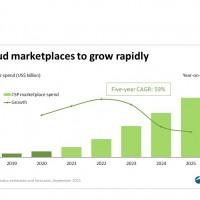 Les ventes de logiciels sur les places de marché atteindront 25 Md€ en 2025, sous l'effet d'une croissance annuelle moyenne de 59%. Illustration : Canalys