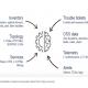 Cisco débourse 100 M$ pour acquérir Sedona Systems