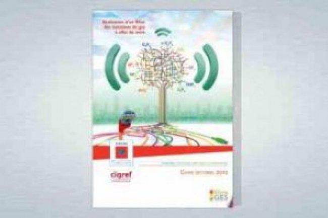 Un guide du Green-IT à l'initiative de l'Ademe et du Cigref