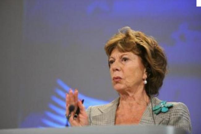 Neelie Kroes vice-pr�sidente de la Commission europ�enne. Cr�dit : D.R