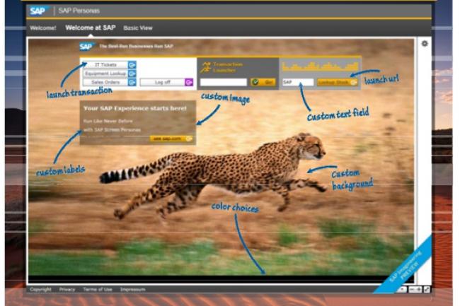 Avec Screen Personas, SAP propose de réaménager et d'agrémenter l'interface de ses logiciels de gestion. (crédit : SAP / cliquer sur l'image pour l'agrandir)