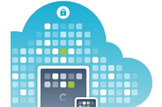 La technologie de Partnerpedia permet de déployer des boutiques d'applications d'entreprise. Crédit: D.R