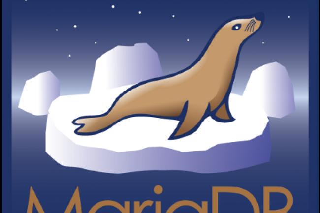 MariaDB Enterprise 2 et Enterprise Cluster 2 essayent de rapprocher SQL et NoSQL (Apache Cassandra).