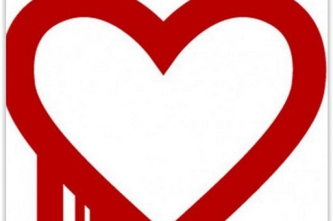 Découverte en avril dernier, la faille de l'extension de chiffrement Heartbleed touchant OpenSSL  a concerné plus de 600 000 sites web. (crédit : D.R.)