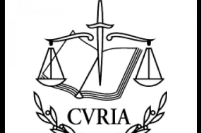 En rejetant le Safe Harbor, la Cour de Justice européenne met les pays de l'union au pied du mur en matière de protection des données personnelles de leurs concitoyens. (crédit : D.R.)