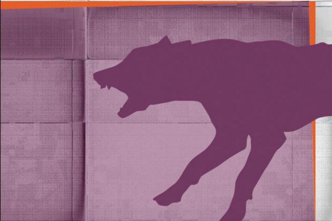 Ubuntu 15.10 inclut la dernière version de la pile cloud OpenStack, Liberty. (crédit : Pierre Cante)