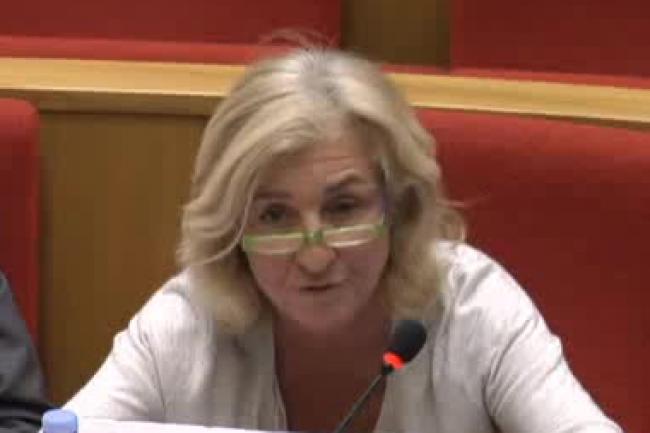 Isabelle Falque-Pierrottin, présidente de la commission nationale de l'informatique et des libertés a présenté le rapport 2015 de la CNIL. (crédit : D.R.)