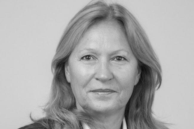 Selon Sylvie Chauvin, présidente de Markess, le cloud pourrait représenter 20% des logiciels et services en 2020.