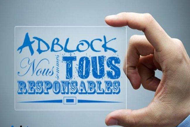 Dans son baromètre, Ipsos note une forte augmentation du recours aux adblocks chez les internautes français. Crédit: D.R.