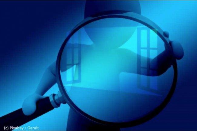 Les éditeurs de logiciels n'hésitent pas à auditer les entreprises. (crédit : Pixabay/Geralt)