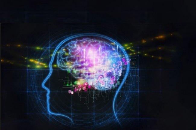 Avec le développement du deep learning, certains avancent que l'intelligence numérique se greffe enfin au big data. (Crédit D.R.)