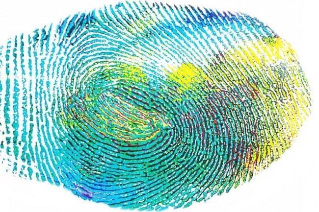 Les citoyens pourront refuser la numérisation et l'enregistrement de leurs empreintes digitales dans la base de données TES uniquement pour les cartes d'identité. (crédit : Pixabay)
