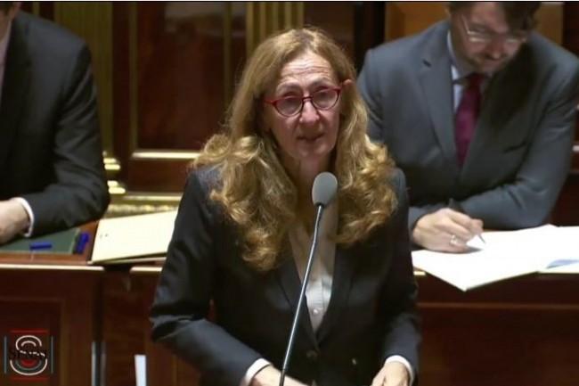 Nicole Belloubet, Garde des Sceaux et Ministre de la Justice (ici lors d'un récent débat au Sénat), porte la réforme de la loi de 1978. (Crédit : D.R.)