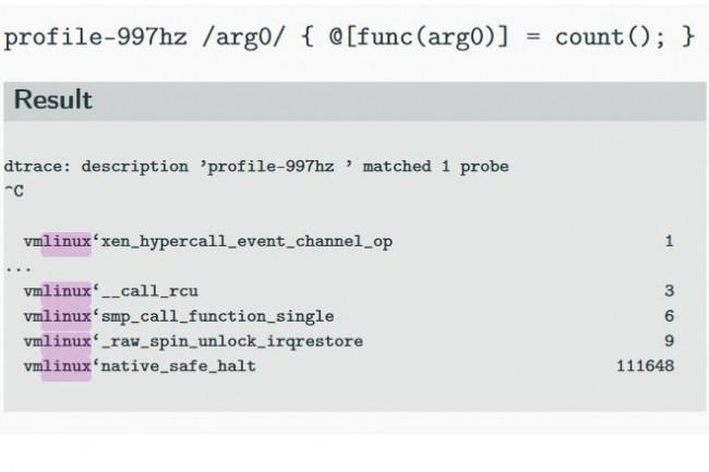 L'outil d'analyse de performance DTrace, inclus par défaut dans les OS Solaris, Mac OS X et FreeBSD, est en cours de portage sous Linux. (crédit : Tomas Jedlicka/Oracle)