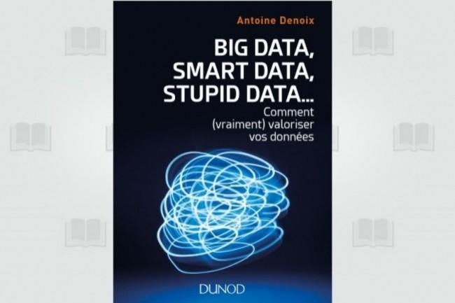 « Big Data, Smart Data, Stupid Data... » vient d'être publié chez Dunod. (crédit : D.R.)