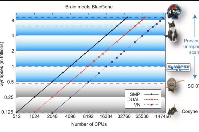 Intel devrait rendre sa puce Loihi aussi performante qu'un cerveau de rat d'ici quelques années. (crédit : Intel)