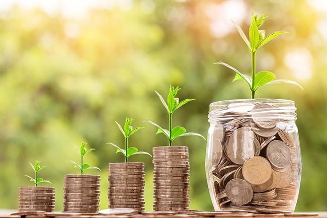 Géré par Bpifrance, le fonds « French Tech seed » reposera sur des apporteurs d'affaires labellisés, chargés d'accompagner ces jeunes pousses et de leur trouver des investisseurs privés. (Crédit : Pixabay)