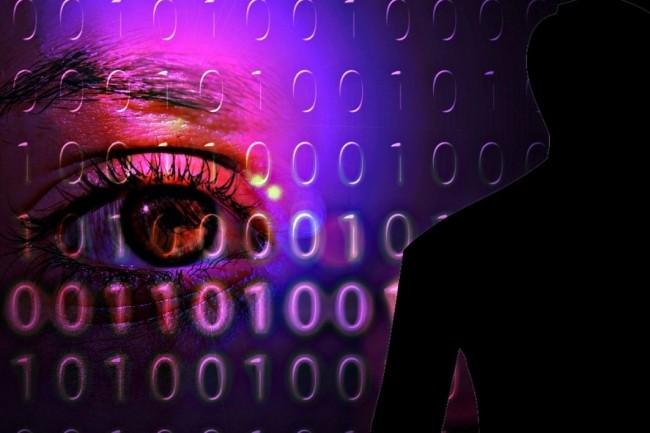 La protection des données personnelles est montée d'un cran avec l'entrée en vigueur du RGPD le 25 mai 2018. (crédit : Pixabay / Alexas_Fotos)