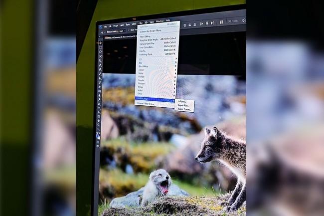 Parmi les plugins développés par Nvidia pour le Siggraph, Super Rez permet d'améliorer sensiblement la qualité des photos. (Crédit : IDG)