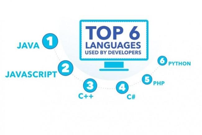 L'enquête de Cloud Foundry sur les langages utilisés en entreprise fait apparaître des usages multilingues, même si Java et Javascript restent en tête. (Crédit : Cloud Foundry/ClearPath Strategies)