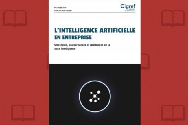 Le Cigref diffuse une deuxième réflexion de son Cercle Intelligence Artificielle. (crédit : D.R.)
