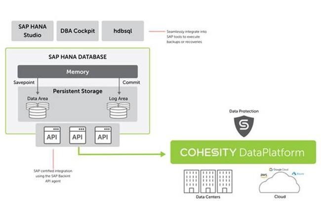 SAP HANA conserve deux types de données en stockage persistant : les points de sauvegarde (le contenu de la mémoire de la base de données, capturé à intervalles réguliers) et les logs de la base de données (toutes les modifications apportées par les transactions). (Crédit : Cohesity)
