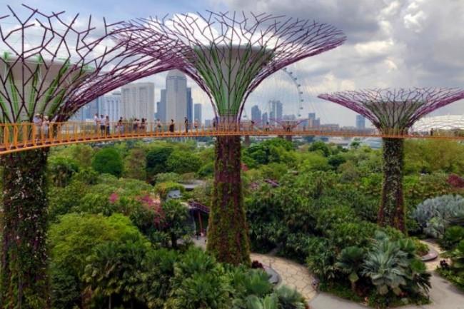 Les projets en smart city de Singapour qui recevront le plus d'argent en 2019 concernent la surveillance vidéo, les transports en commun, l'éclairage public, la gestion de la circulation et le back-office connecté. (crédit : Nick Fewings / CCO)