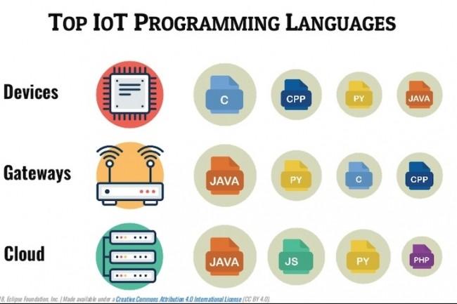Les langages Java, C, JavaScript, et Python dominent l'IoT