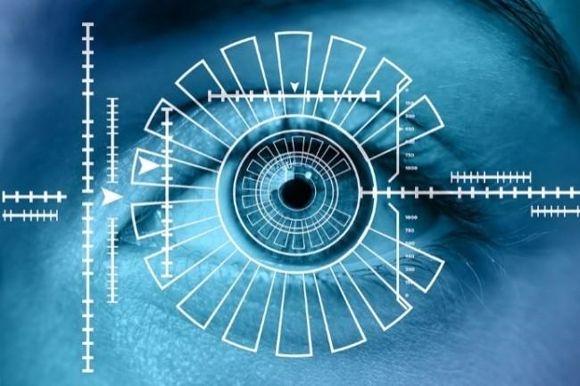La Cnil a publié son règlement type sur la biométrie sur les lieux de travail. (Crédit Photo : Geralt/Pixabay)