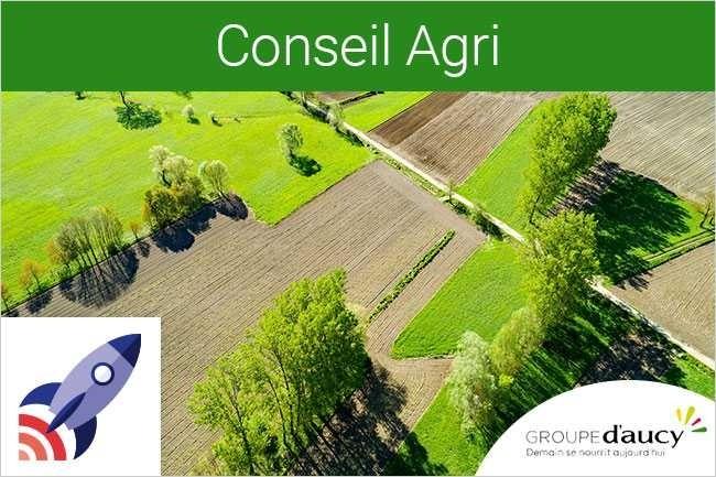France Entreprise Digital : Découvrez aujourd'hui Conseil Agri