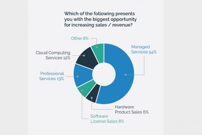 Les services managés dominent largement les opportunités de business des ESN, selon l'étude menée par IT Europa. (Crédit : Barracuda Networks)