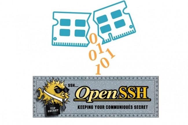 Le projet OpenSSH a publié son patch après la présentation par une équipe de chercheurs d'une attaque appelée RAMBleed. (Crédit : D.R.)