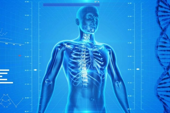 Les chercheurs de l'Université de Borwn et Intel vont enregistrer les signaux moteurs et sensoriels de la colonne vertébrale et utiliser les réseaux neuronaux artificiels pour apprendre comment simuler des communications et commandes post-traumatiques. (crédit : PublicDomainPictures / Pixaby)