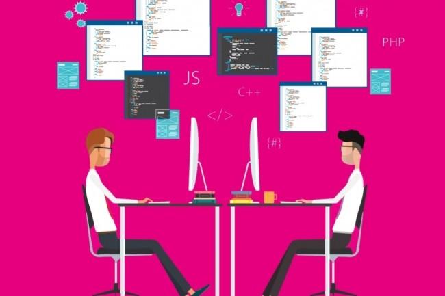 La crise des compétences est le principal frein à la croissance des entreprise de l'IT selon le baromètre de l'expertise du numérique réalisé par Inops. Crédit. Inops.