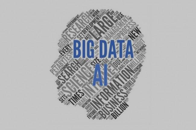 Les co-fondateurs du cabinet NVP voient peu d'initiativesdans les grandes entreprises pour changerles attitudes et les comportements humains autour des données. (Crédit : NVP)