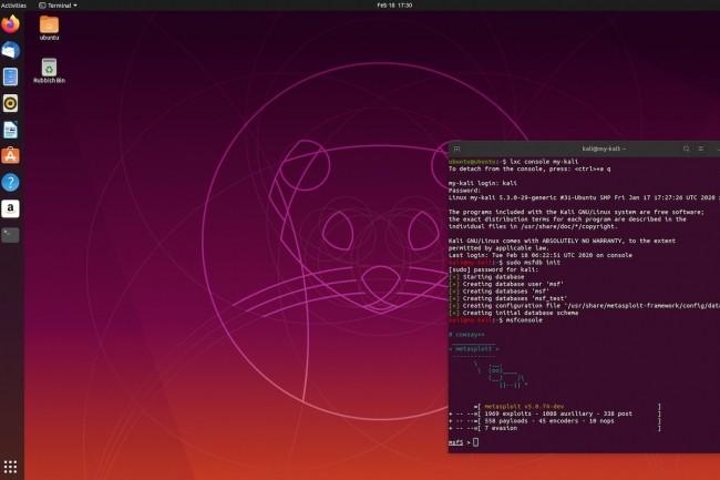 Reposant sur Debian, la distri Kali Linux (embarquée ici dans un container à droite) arrive avec une série d'outils de pénétration. (Crédit Kali)