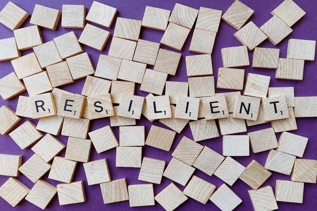 La résilience d'une organisation a une définition précise et bien peu d'entreprises peuvent se vanter d'être effectivement résilientes. (Crédit Photo : Workandpics/Pixabay)