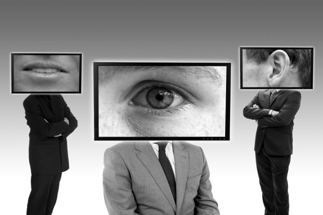 Entre les failles et les bugs en matière de protection de la vie privée, Zoom fait face à un bad buzz. (Crédit Photo : Succo/Pixabay)