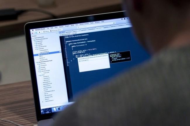 Les professionnels du code sont moins exposés à la crise sanitaire que d'autres professions, révèle une enquête mondiale réalisée par CedinGame. Crédit photo: Pixabay/Free-Photos.