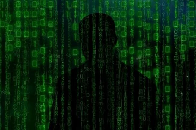 L'origine et surtout le mobile des cyberattaques par d�ni de service reste � d�terminer d'autant plus qu'elles intriguent par leur caract�re coordonn�. (cr�dit : tigerlily713/Pixabay)