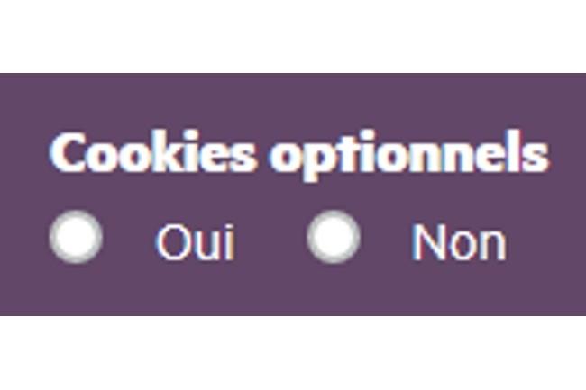 Pour la Cnil, le refus des cookies doit être simple sans multiplier les clics. (Crédit Photo DR)
