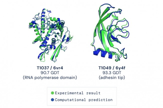 Déterminer sous quelles formes les protéines se replient a constitué l'un des défis majeurs en biologie depuis 50 ans. Une avancée notable est réalisée avec le système IA AlphaFold de Google Deepmind. (Crédit : Deepmind)