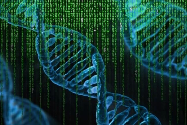 Une cour d'appel américaine a autorisé la demande d'un accusé souhaitant accéder au code source d'un logiciel d'analyse ADN qui l'a incriminé. (Crédit Photo : The digital Artist/Pixabay)