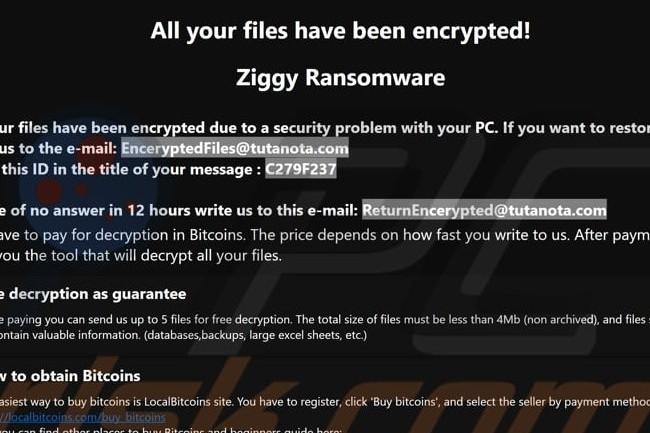 Le groupe de cybercriminels derrière Ziggy a stoppé ses activités alors que les opérations de police se multiplient avec succès. (crédit : D.R.)