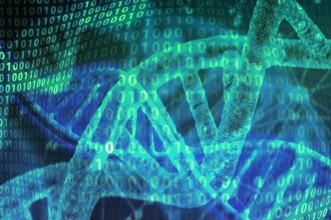 La technologie de stockage d'ADN permettrait de stocker l'int�gralit� de YouTube dans votre r�frig�rateur. (Cr�dit : Gerd Altmann)