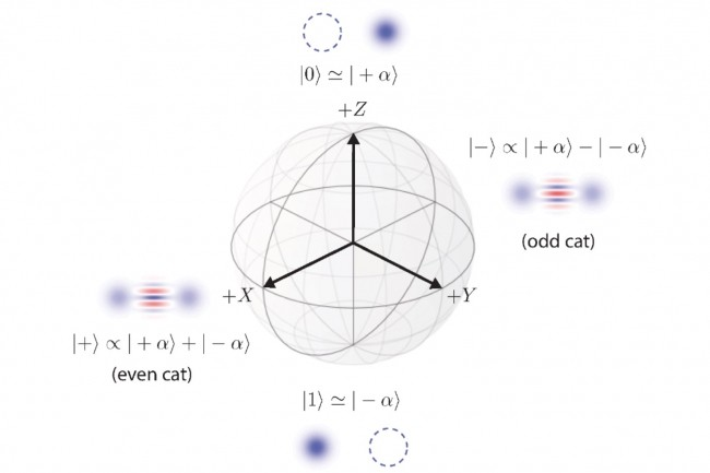 Dans l'architecture d�crite par les chercheurs d'AWS,�les informations sont stock�es en utilisant le codage appel� cat qubit. Ci-dessus, sph�re de Bloch du cat qubit. (Cr�dit : AWS Center for Quantum Computing)