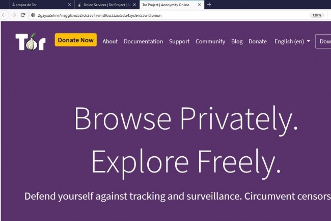 D�s le 15 juillet, Tor va supporter des URL plus complexes avec le passage � la v3 de ses services onion. (Cr�dit : Tor)