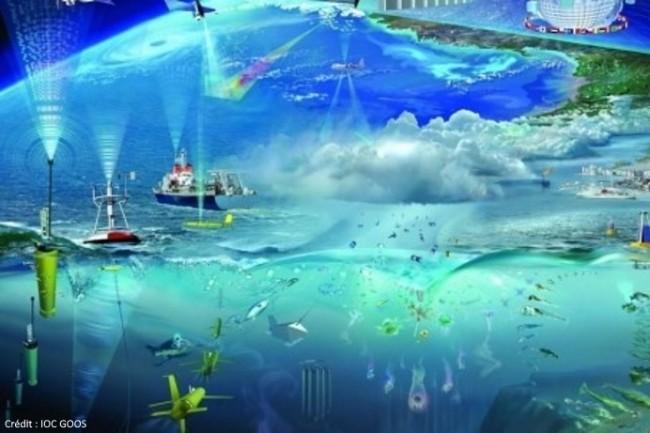Les observations in situ sont recueillies par un large �ventail de plateformes et d'instruments, des planeurs aux bou�es en passant par les mammif�res marins.