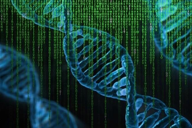 Des scientifiques du Massachusetts Institute of Technology (MIT) et de l'Institut Pasteur en France ont d�velopp� une technique de reconstruction de g�nomes entiers sur un ordinateur. (Cr�dit : Pete Linforth, Pixabay)